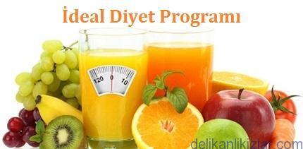 İdeal Diyet Programı